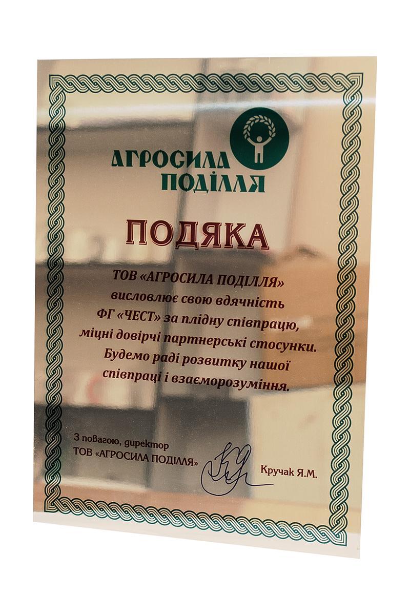 Печать дипломов Изготовление дипломов Винница Украина 3